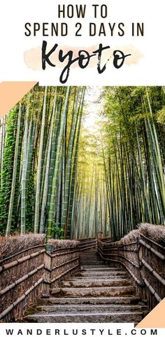 How To Spend 2 Days in Kyoto Japan Bamboo Forest Deer Park Monkey Forest Kyoto Travel Japan Travel Kyoto Itinerary Kyoto Travel Tips Explore Kyoto Kyoto Travel Guide, Japan Travel Guide, Tokyo Travel, Asia Travel, Hawaii Travel, Spain Travel, Japan Guide, Travel Abroad, Travel Packing