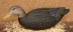 Wood Duck Carvings | Collectible wooden decoys