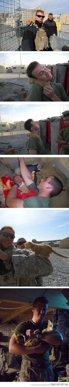 Kitty rescued by US Marine in Afghanistan. This is the sweetest thing I have ever seen :)