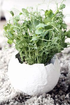 DIY: plaster egg Spring Crafts, Holiday Crafts, Eastern Eggs, Easter Holidays, Spring Green, Seasonal Decor, Happy Easter, Diy For Kids, Planting Flowers