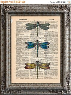 SALE Dragonflies 2 on Vintage Upcycled Dictionary Art by EcoCycled