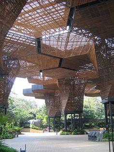 Orquideorama, Jardin Botanico de Medellin, Colombia