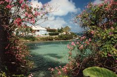 Bermuda Cottage | Recent Photos The Commons Getty Collection Galleries World Map App ...