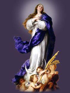 Campomaiornews: Celebra-se hoje o dia da Imaculada Conceição padro...