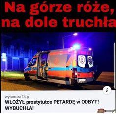 Very Funny Memes, Wtf Funny, Polish Memes, Cool Pictures, Funny Pictures, Funny Mems, Reaction Pictures, Fandom, Best Memes