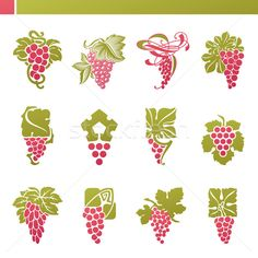 Vector grape graphic designs
