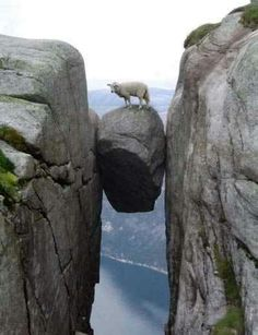 BETWEEN A ROCK AND A HARD PLACE (Oh my!)