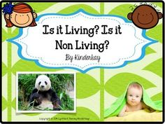 This is a quick and easy introductory packet to add your present Living and Non Living curriculum. Young children can distinguish between many living and non living things. They know, for example, that a person is alive, a zebra is alive, and a bird is alive.