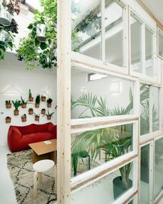 *got paint..., cans? DIY insp.; suspend plant filled paint cans (new/unused ones can be purchased @ hm. improvement stores, cheap) from ceiling for a solarium/conservatory effect...