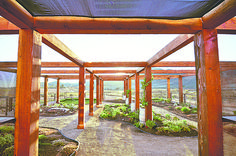 Spanish Exterior, Gazebo, Pergola, Yard, Shades, Outdoor Structures, Landscape, Inspiration, Biblical Inspiration