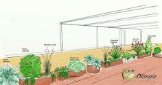 Terraza jardineras #VO