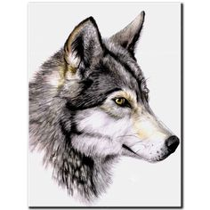 Find More Diamond Painting Cross Stitch Information about 5D DIY diamond Painting Cross Stitch full square drill embroidery wolves Diamond mosaic Home Decor Gift A1215,High Quality Diamond Painting Cross Stitch from Alma Store on Aliexpress.com