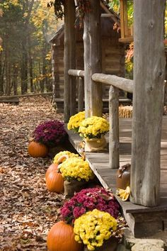 would love to have the entire family together at a rustic cabin for Thanksgiving and a few close friends