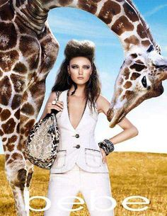 Wild Animal Fashion Campaigns - Bebe Summer 2009 Safari Catalogue (GALLERY)