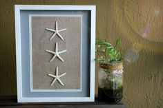 Starfish Wall Art White Shadow Box by FloridaSandDollarArt #Coastal #Ocean #Sea #Florida #SandDollar #Beach #Starfish #WallArt #BeachArt #Etsy #ShadowBox #Frame #SeaShell