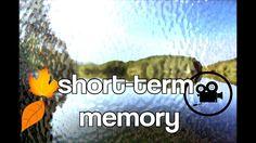 SHORT-TERM MEMORY!