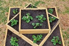 If space is an issue the answer is to use garden boxes. In this article we will show you how all about making raised garden boxes the easy way. Tiered Planter, Garden Planter Boxes, Tiered Garden, Strawberry Planters, Strawberry Garden, Building A Raised Garden, Raised Garden Beds, Raised Beds, Raised Gardens