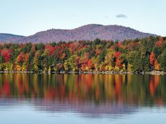 Spectacular foliage in Speculator, NY. Click here for more information about leaf peeping in the Adirondacks. Photo credit to Cindy Sedaker.