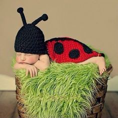 Ladybug Red Black Baby Photography Prop Newborn Infant