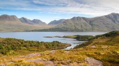 New clues to ancient life from billion-year-old lake fossils | Earth | EarthSky University Of Sheffield, Scientific Articles, West Coast Scotland, Planetary Science, Archaeology News, Marine Environment, Plant Science, Things Under A Microscope, Fossils