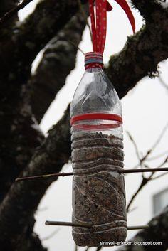 Die 36 Besten Bilder Von Pet Flaschen