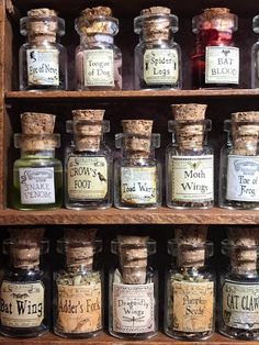 20 Bottles of Witch s herbs and poisons Bottle set of 4 dollhouse size in glass jars 1 12 1 12 Deco Harry Potter, Harry Potter Room, Harry Potter Potions, Harry Potter Halloween, Slytherin Aesthetic, Harry Potter Aesthetic, Hogwarts, Witch Herbs, Anniversaire Harry Potter