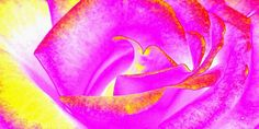 """A cheerful abstract rose presentation to please the eye while enhancing the mood of the viewer. Perfect on a number of quality products listed right here in my site. Placing an order is so easy. Treat either yourself or that special person in your life. """"Splendid Rose Abstract"""""""