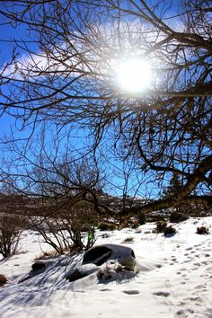 Deixa entrar o sol | Penhas Douradas | Serra da Estrela :: Portugal Portugal, Landscape, Pictures, Winter Time, Sun, Photos, Scenery, Photo Illustration, Landscape Paintings