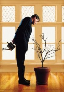 Grow your business organically. 5 mistakes Business Owners make when growing their business.http://wp.me/p1sv2g-3Q