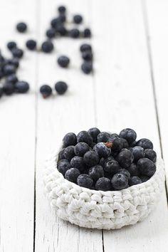 Blueberry Raquel Carmona