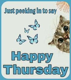 G Morning, Happy Thursday, Sayings, Lyrics, Quotations, Idioms, Quote, Proverbs