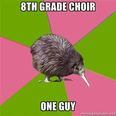 I'm in eighth grade choir and we have about 10 guys and I'm the soprano who can sing lower than almost all of them