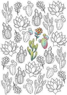 ▷ 1001 + anti-stress coloring pages to keep the mind positive – Cactus Succulents Drawing, Cactus Drawing, Printable Coloring Pages, Colouring Pages, Mandala Coloring, Coloring Sheets, Coloring Books, Kaktus Tattoo, Fake Tattoo