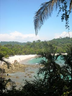 """Manuel Antonio, Costa Rica.  I have been to this EXACT spot, it's called """"Tres Playas"""" or """"Three Beaches"""". It was an absolutely amazing place!"""