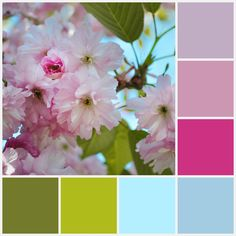 A spring inspired soothing color palette from Barbara Gilbert Interiors | Interior Design Dallas