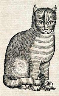 メモ「四足獣の歴史」トプセル たぶん動物と怪物     namurayusuke