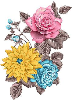 Flora Flowers, Bunch Of Flowers, Botanical Flowers, Floral Illustrations, Illustration Art, Beautiful Flower Drawings, Beautiful Nature Wallpaper, Floral Border, Flower Pictures