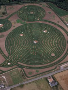 Labyrinth Maze:  Reignac-Sur-Indre, Touraine, Centre, France, is the largest plant maze in the world.