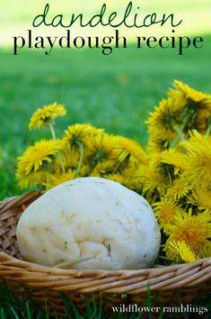 dandelion playdough recipe - Wildflower Ramblings — very ♻ Sensory Activities, Craft Activities For Kids, Sensory Play, Summer Activities, Crafts For Kids, Sensory Rooms, Sensory Table, Sensory Bins, Preschool Ideas
