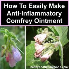 How To Easily Make Anti-Inflammatory Comfrey Ointment