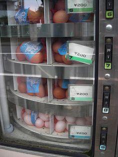 Fresh egg vending machine