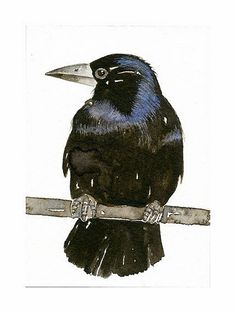 Crow Bird ACEO Art Print of my original watercolor, painting by Lorisworld