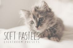 Soft Pastel Lightroom Presets by Preset Perfect on Creative Market