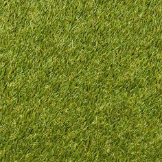 Field Turf or Natural Grass: Which One is Better? Recent studies to measure speed and agility to show if athletes are faster on artificial or natural grass. Field Turf, Green Grass Background, Astro Turf, Lawn Maintenance, Terrarium Plants, Moss Terrarium, 3d Warehouse, Background For Photography, Lawn Care