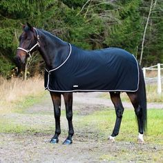 Finn Tack's Pritex Dress Sheet is stunning! This lightweight rug is perfect for the summer and is very stylish.
