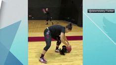 South Carolina women's basketball gets an adorable new puppy teammate   ESPN - USANEWS.CA