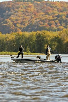 Get the fall fishing forecast for 2017 from the Iowa DNR Trout Fishing Tips, Fishing Guide, Salmon Fishing, Kayak Fishing, Fishing Tricks, Fishing Rods, Fishing Girls, Gone Fishing, Best Fishing