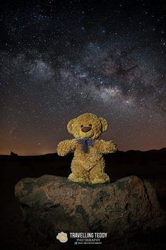 Teddy Bear Emoji, Teddy Bear Names, Teddy Bear Gifts, Teddy Bear Pictures, My Teddy Bear, Cute Teddy Bears, Bear Toy, Teddy Hermann, Teady Bear