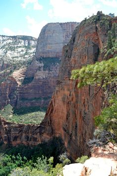 """Angels Landing. Zion National Park, UT (""""Место, где приземляются Ангелы"""". Национальный парк Зайон. Юта)"""