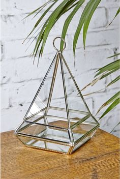 Home Gifts, Sweet Home, Terrarium, Dads, Ranges, Indoor, Plant, Parents,  Interior